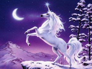 Qu'est-ce-qu'une-licorne-300x225